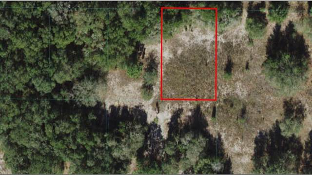 SW 104TH Lane #4, Dunnellon, FL 34434 (MLS #OM621552) :: The Hustle and Heart Group