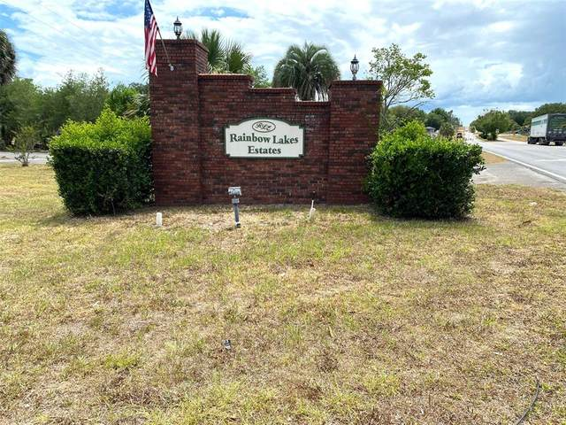 TBD SW Great Lakes Boulevard, Dunnellon, FL 34431 (MLS #OM621583) :: Frankenstein Home Team