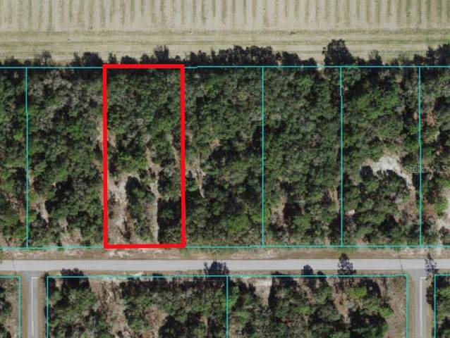 00 SW Pine Bluffs Road Lot 23, Dunnellon, FL 34431 (MLS #OM621603) :: Griffin Group