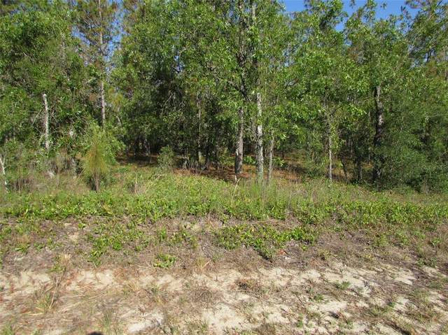 TBD SW Timberlake Road, Dunnellon, FL 34431 (MLS #OM621610) :: The Hustle and Heart Group