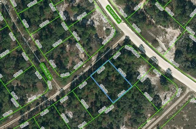 391 Cartier Avenue, Lake Placid, FL 33852 (MLS #OM621649) :: The Hustle and Heart Group