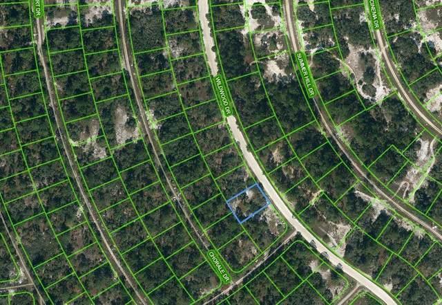 354 Wildwood Drive, Lake Placid, FL 33852 (MLS #OM621659) :: The Price Group