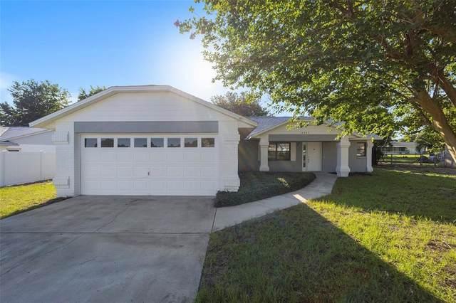 10863 SE 73RD Court, Belleview, FL 34420 (MLS #OM621679) :: Your Florida House Team