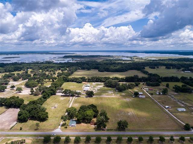 3065 W Hwy 318, Citra, FL 32113 (MLS #OM621691) :: Griffin Group