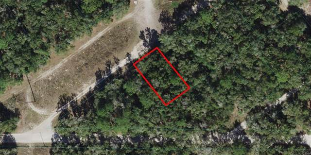 S San Angelo Parkway, Dunnellon, FL 34432 (MLS #OM621696) :: RE/MAX Local Expert