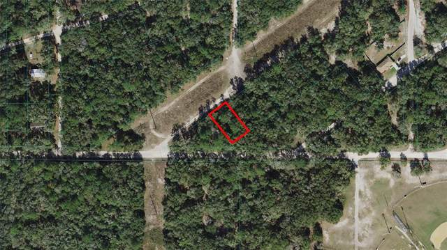 S San Angelo Parkway, Dunnellon, FL 34432 (MLS #OM621698) :: RE/MAX Local Expert