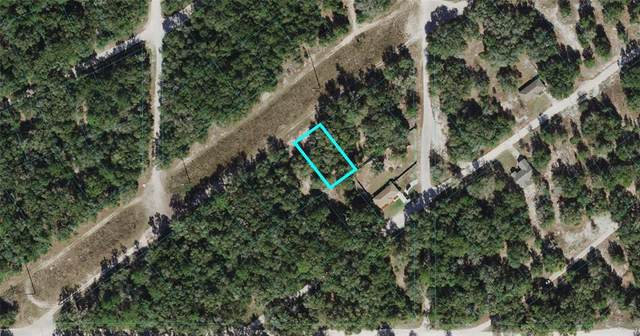 S San Angelo Parkway, Dunnellon, FL 34432 (MLS #OM621699) :: RE/MAX Local Expert