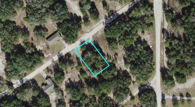 St Augustine Drive, Dunnellon, FL 34432 (MLS #OM621702) :: RE/MAX Local Expert