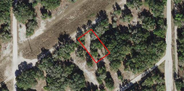 S San Angelo Parkway, Dunnellon, FL 34432 (MLS #OM621704) :: RE/MAX Local Expert