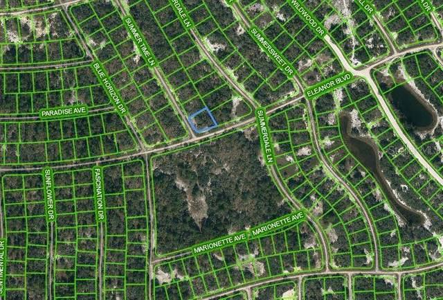 384 Eleanor Boulevard, Lake Placid, FL 33852 (MLS #OM621714) :: Expert Advisors Group