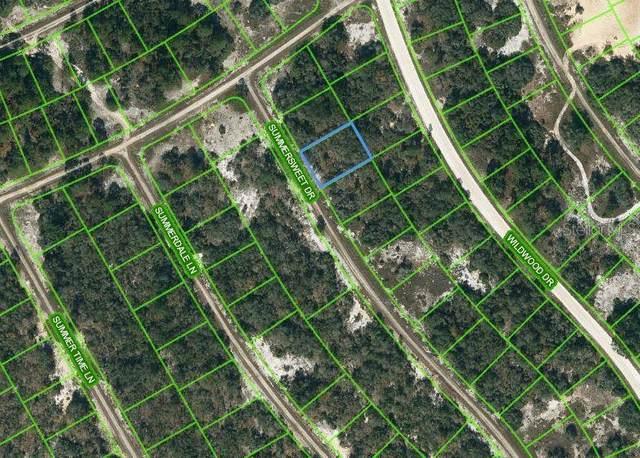 349 Summersweet Drive, Lake Placid, FL 33852 (MLS #OM621716) :: Expert Advisors Group