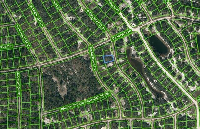322 Summersweet Drive, Lake Placid, FL 33852 (MLS #OM621722) :: Expert Advisors Group