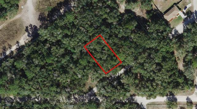 TBD St. Augustine Drive, Dunnellon, FL 34432 (MLS #OM621737) :: The Hustle and Heart Group