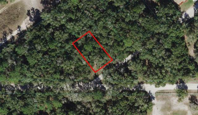TBD St Augstine Drive, Dunnellon, FL 34432 (MLS #OM621740) :: The Hustle and Heart Group