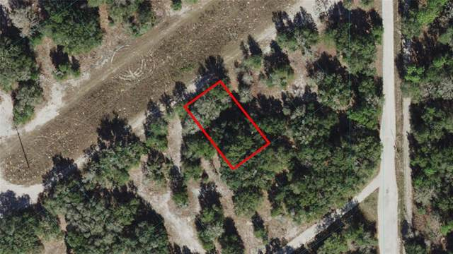 TBD S San Angelo Pkwy, Dunnellon, FL 34432 (MLS #OM621747) :: RE/MAX Local Expert