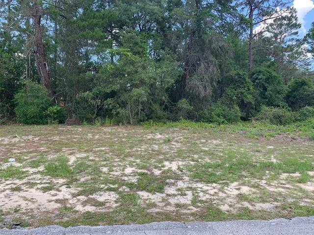 SW 50TH Circle, Ocala, FL 34473 (MLS #OM621753) :: Bustamante Real Estate