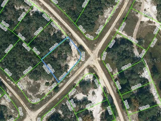 418 Stardust Drive, Lake Placid, FL 33852 (MLS #OM621762) :: The Price Group