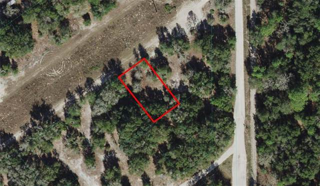 S San Angelo Parkway, Dunnellon, FL 34432 (MLS #OM621765) :: RE/MAX Local Expert