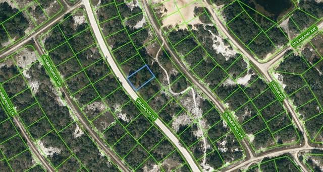 315 Wildwood Drive, Lake Placid, FL 33852 (MLS #OM621780) :: Globalwide Realty