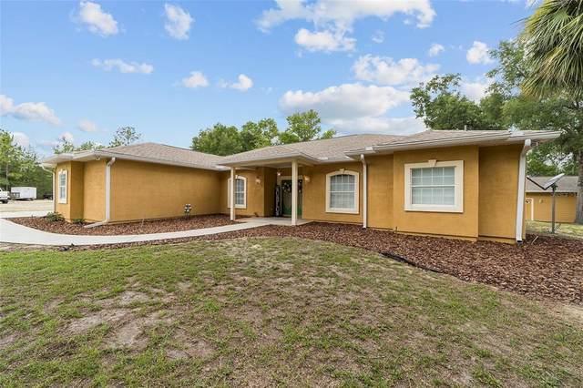 1292 NE Sr 121, Williston, FL 32696 (MLS #OM621812) :: Zarghami Group