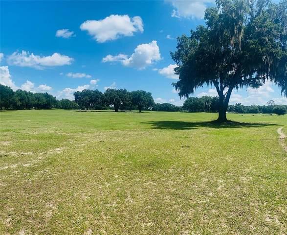 2051 SE 155TH Street, Summerfield, FL 34491 (MLS #OM621813) :: Everlane Realty