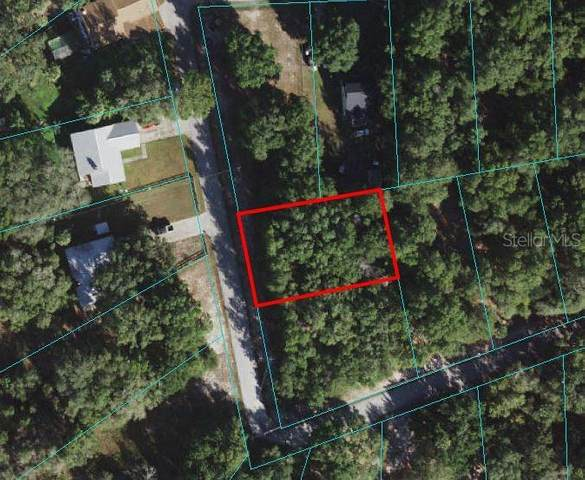 SE 165 Court, Ocklawaha, FL 32179 (MLS #OM621830) :: Gate Arty & the Group - Keller Williams Realty Smart