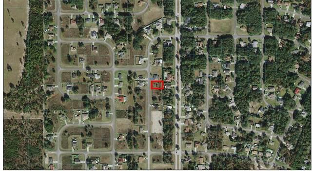 TBD SW 46TH Court, Ocala, FL 34473 (MLS #OM621831) :: Southern Associates Realty LLC