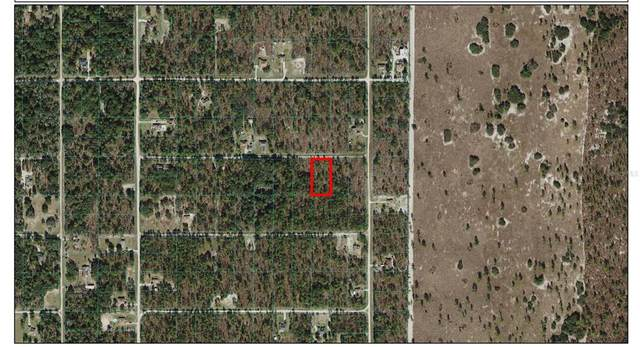 TBD SW 95TH Place, Dunnellon, FL 34432 (MLS #OM621838) :: Bridge Realty Group