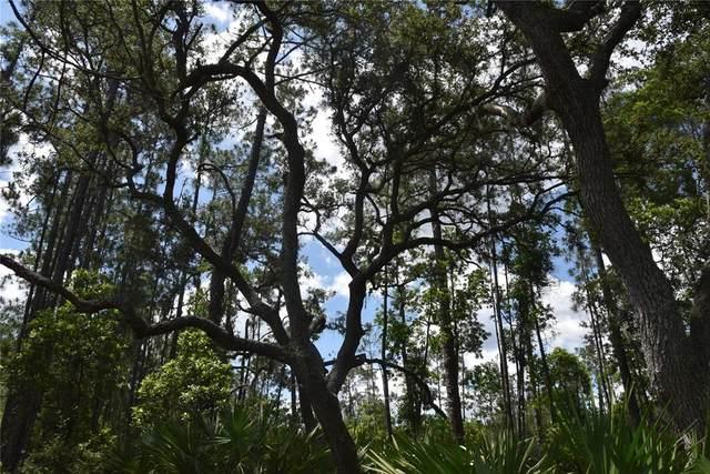Sisco Dirt Rd, Pomona Park, FL 32181 (MLS #OM621849) :: Pristine Properties