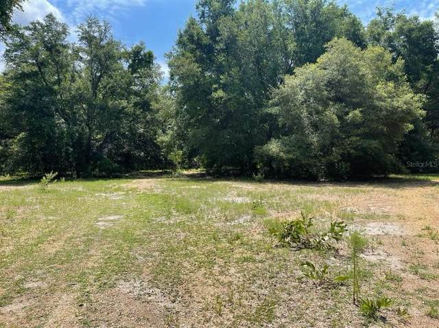 Sw 117 Th Ct, Dunnellon, FL 34432 (MLS #OM621867) :: Your Florida House Team