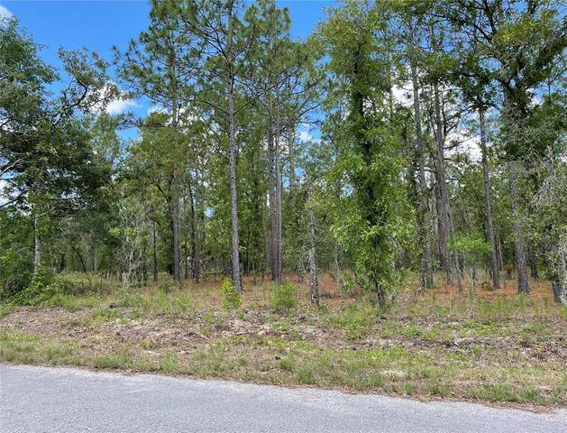 000 NW Holly Road, Dunnellon, FL 34431 (MLS #OM621900) :: Zarghami Group