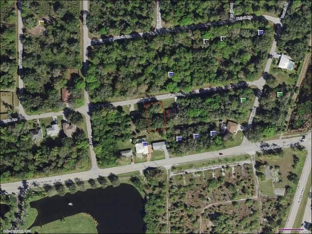 23173 Glen Avenue, Port Charlotte, FL 33980 (MLS #OM621919) :: Zarghami Group