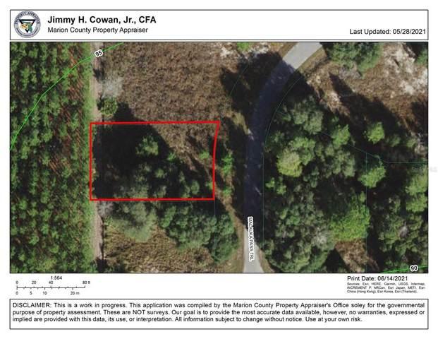 Malauka Pass, Ocklawaha, FL 32179 (MLS #OM621954) :: Gate Arty & the Group - Keller Williams Realty Smart