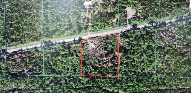 8740 E Highway 318, Citra, FL 32113 (MLS #OM621980) :: Sarasota Home Specialists