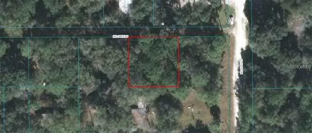 13710 NE 158TH Lane, Fort Mc Coy, FL 32134 (MLS #OM621990) :: Premium Properties Real Estate Services