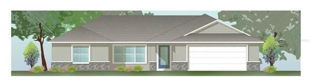 1247 W Mcneal Drive, Citrus Springs, FL 34434 (MLS #OM622030) :: Armel Real Estate