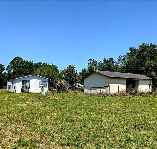 17480 SE 95TH STREET Road, Ocklawaha, FL 32179 (MLS #OM622070) :: Prestige Home Realty