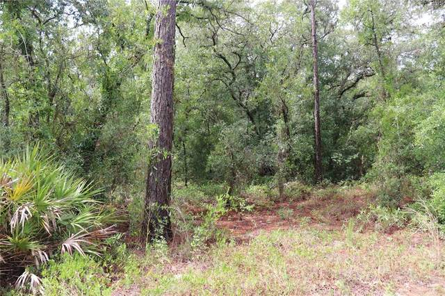00 SW 90TH Place, Dunnellon, FL 34432 (MLS #OM622073) :: Bridge Realty Group