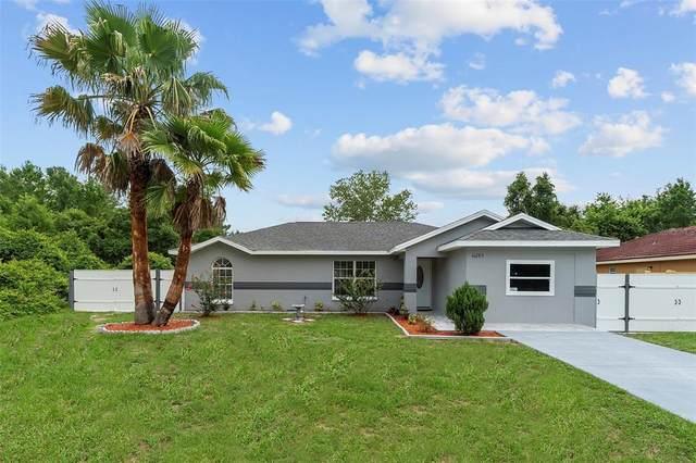 16285 SW 21ST Court, Ocala, FL 34473 (MLS #OM622083) :: Team Pepka