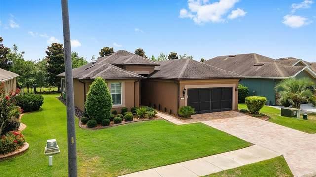 7441 SW 100TH CT, Ocala, FL 34481 (MLS #OM622090) :: Burwell Real Estate