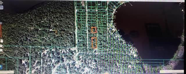 0 NE 111TH Court, Fort Mc Coy, FL 32134 (MLS #OM622094) :: Griffin Group
