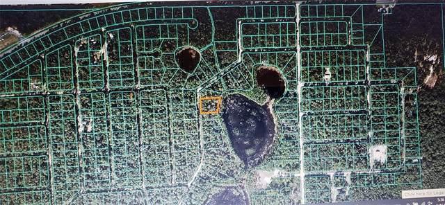 0 NE 114TH AVENUE Road, Fort Mc Coy, FL 32134 (MLS #OM622102) :: Griffin Group