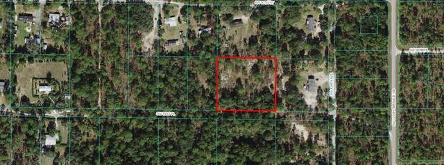 13105 SW 91ST Place, Dunnellon, FL 34432 (MLS #OM622108) :: Your Florida House Team