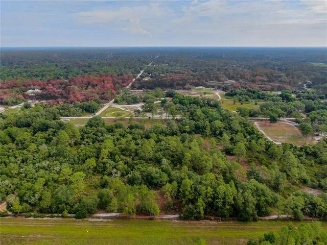 SW 158TH Lane, Dunnellon, FL 34432 (MLS #OM622168) :: RE/MAX Marketing Specialists