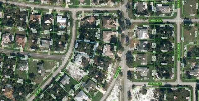 104 Fig Road NW, Lake Placid, FL 33852 (MLS #OM622176) :: Globalwide Realty