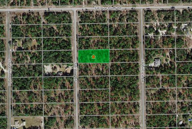 1983 SW Wood Road, Dunnellon, FL 34430 (MLS #OM622236) :: RE/MAX Local Expert