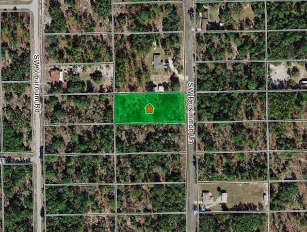 1970 SW Persimmon Lane, Dunnellon, FL 34431 (MLS #OM622239) :: Team Pepka