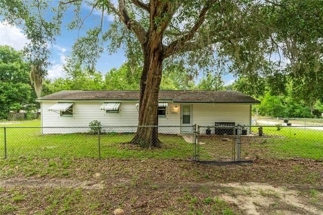 14201 SE 41ST Terrace, Summerfield, FL 34491 (MLS #OM622286) :: The Duncan Duo Team