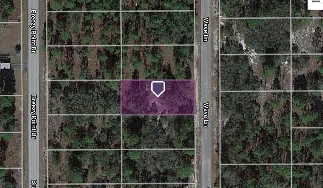 0 SW Wave Lane, Dunnellon, FL 34431 (MLS #OM622379) :: Armel Real Estate