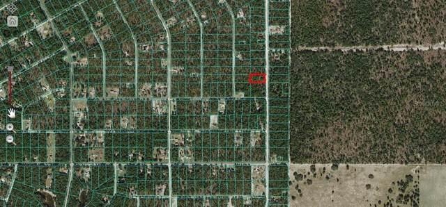 SW 121 Terrace, Ocala, FL 34481 (MLS #OM622406) :: The Hustle and Heart Group